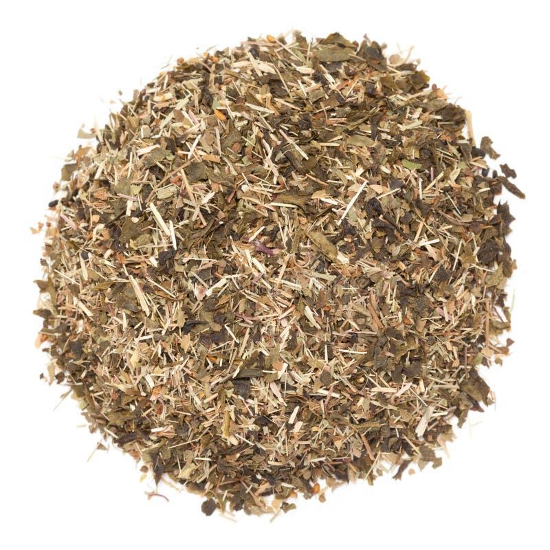 Grönt te för organisk Lemongrass som isoleras på vit bakgrund royaltyfri bild