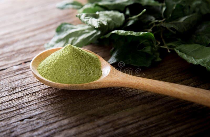 Grönt te för pulver och gröna teblad royaltyfria bilder