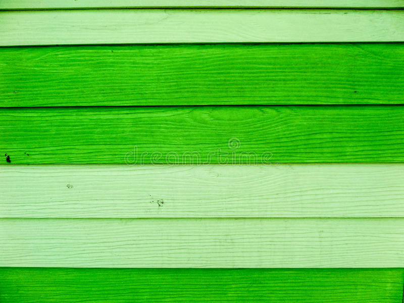 grönt texturträ arkivbilder