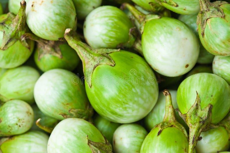 grönt thai för aubergine royaltyfri foto