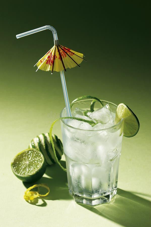 grönt tropiskt för coctail royaltyfri fotografi