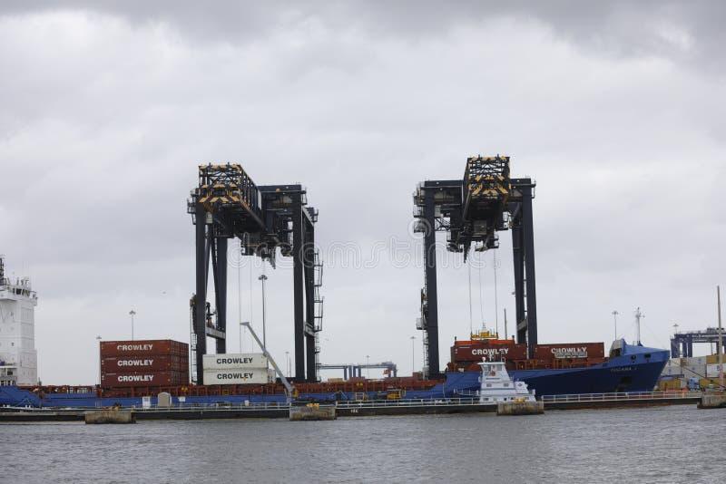Grúas de los marismas del puerto fotografía de archivo