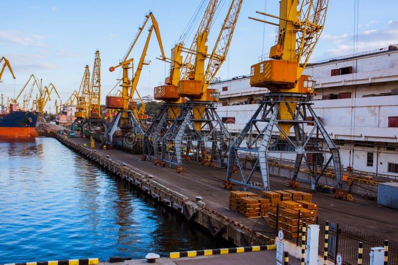 Grúas grandes en el puerto marítimo imagen de archivo
