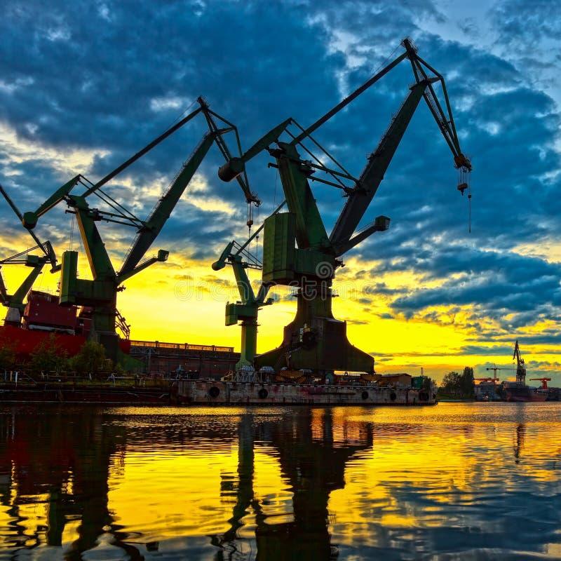 Grúas monumentales en la puesta del sol fotos de archivo