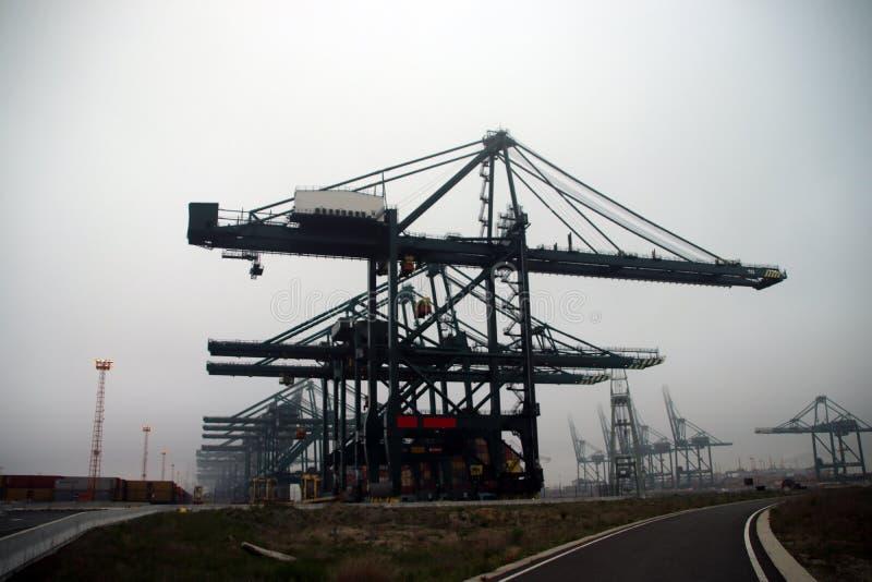 Grúas para el envase del mar en día oscuro de la niebla en el puerto de Amberes, Bélgica imagen de archivo
