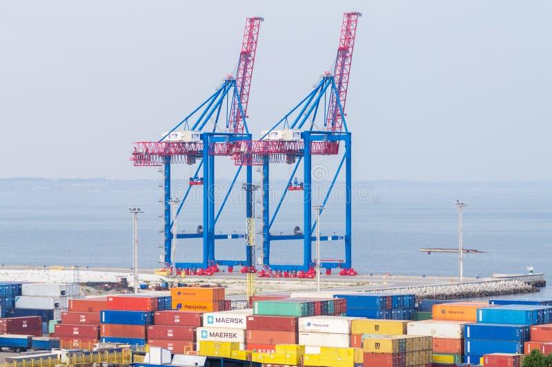 Grúas pesadas del puerto y portadores comerciales fotografía de archivo libre de regalías