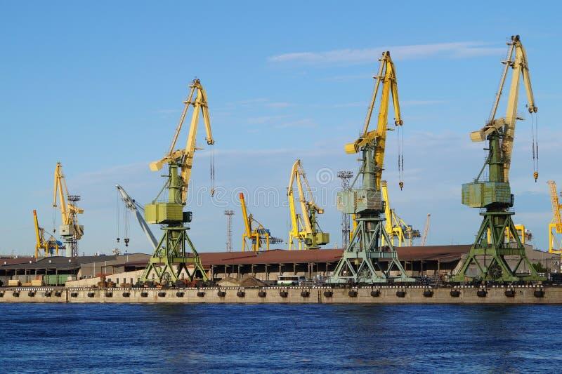 Grúas porta en el puerto marítimo Petrolesport, St Petersburg foto de archivo
