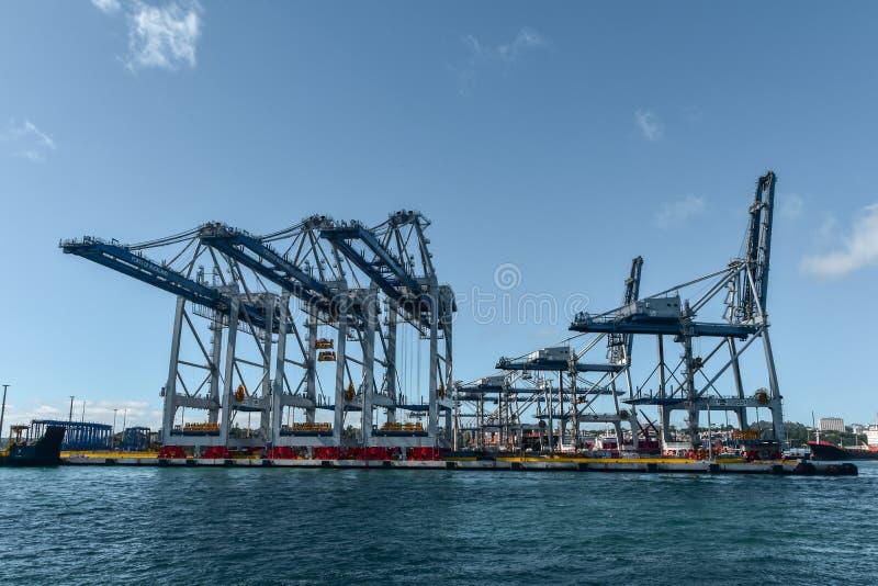 Grúas y envases en los puertos de Auckland foto de archivo libre de regalías