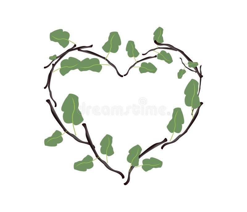 Grün-Blätter und Zweige in einer schönen Herz-Form stock abbildung