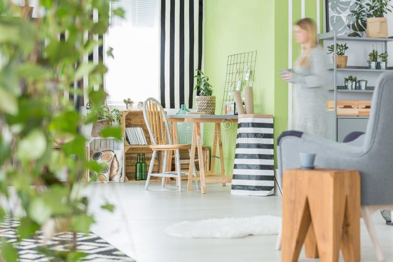 Grün flach mit Zierpflanzen stockfotos