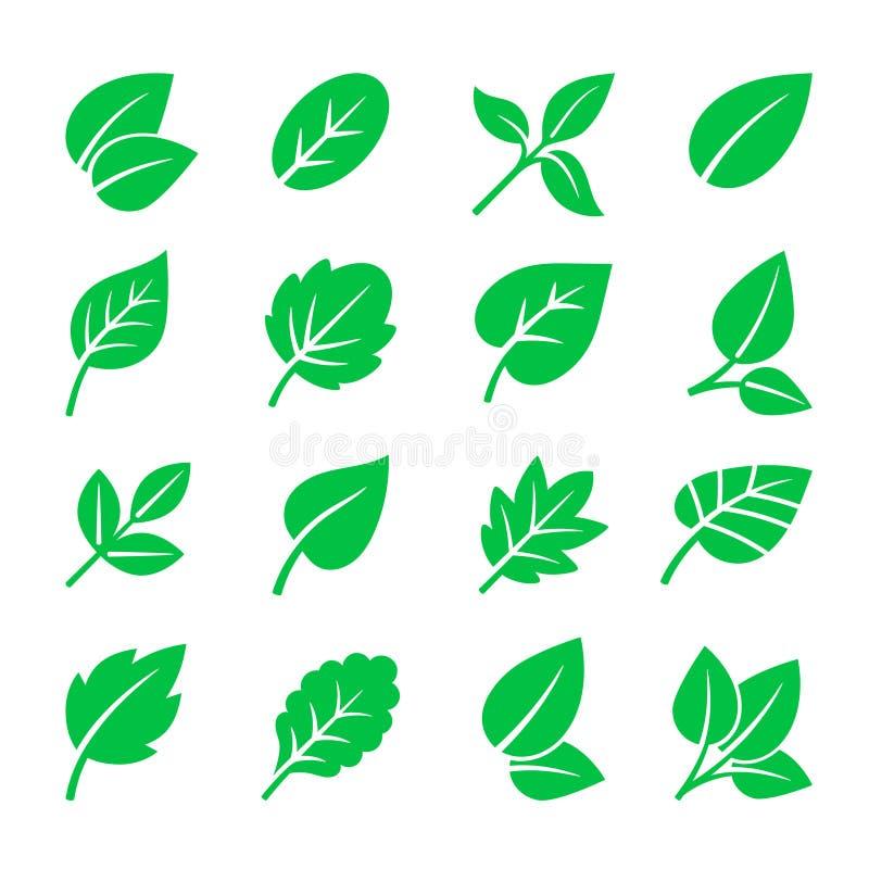 Grün lässt Ikonen Vector Blattsymbolillustration, Baumblattzeichen auf Weiß für natürliches Logo lizenzfreie abbildung