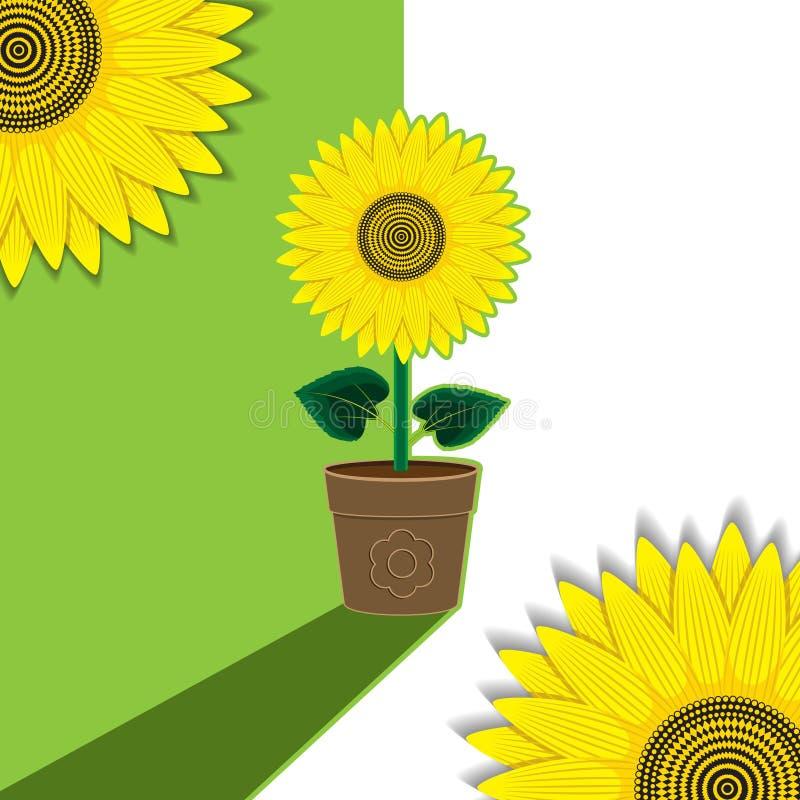 Grün-weiße Betriebshintergrund-Blumensonnenblume eingemacht Hintergrund, Fahne, Aufkleber, Abdeckung Regenbogen und Wolke auf dem vektor abbildung
