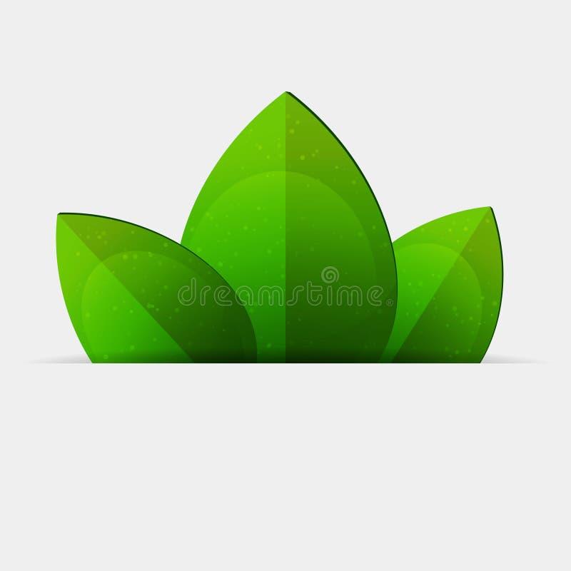 Grünblätter vektor abbildung