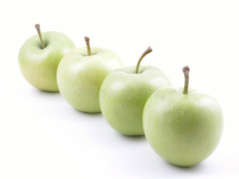 Grüne Äpfel stockbild