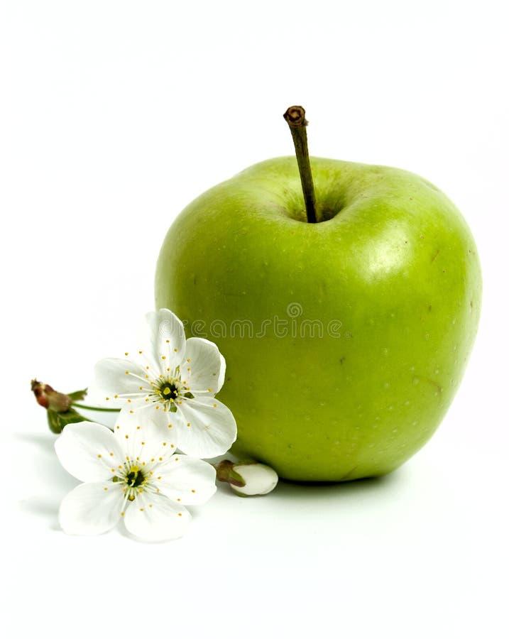 Download Grüne Äpfel und Blumen stockfoto. Bild von makro, anordnung - 9095294