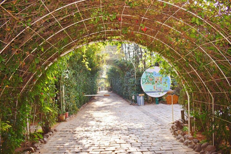 Grüne Abdeckung, Eingang in einem Erholungsort in Bangalore lizenzfreies stockfoto