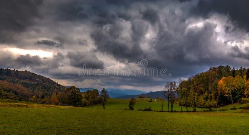Grüne Alpenwiese mit bunten gefallenen Blättern, Herbstwald und drastischem bewölktem Himmel lizenzfreie stockfotografie