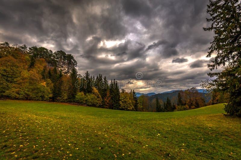 Grüne Alpenwiese mit bunten gefallenen Blättern, Herbstwald und drastischem bewölktem Himmel stockbilder