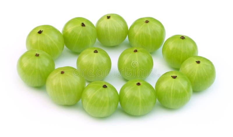 Grüne amla Früchte lizenzfreie stockfotografie