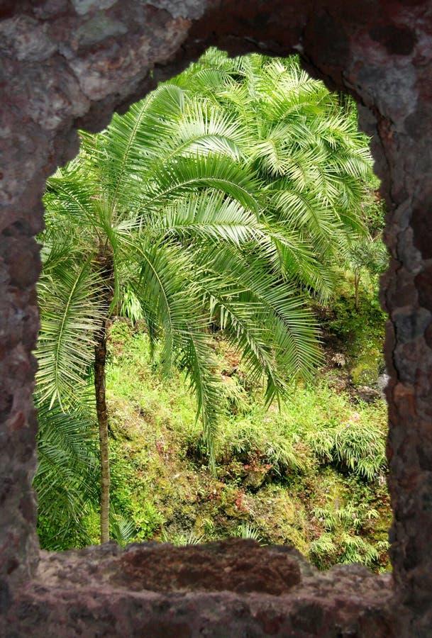 Grüne Ansicht stockbild