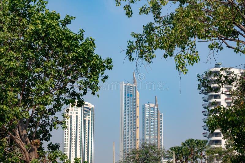 Grüne Bäume und Wolkenkratzer auf klarem Hintergrund des blauen Himmels lizenzfreie stockfotografie