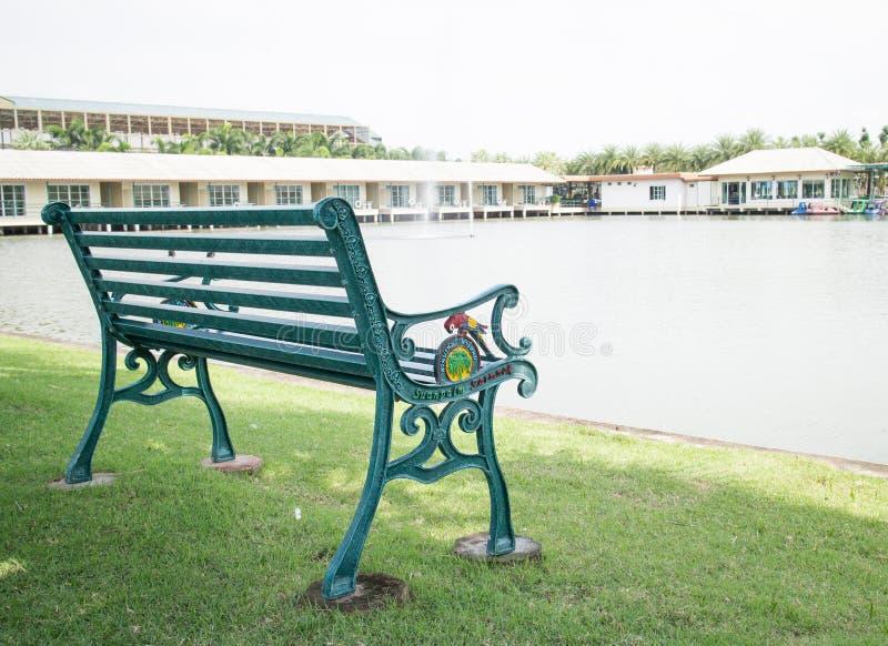 Grüne Bank im Park stockfoto