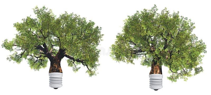 Grüne begrifflichbäume der hohen Auflösung lizenzfreie abbildung