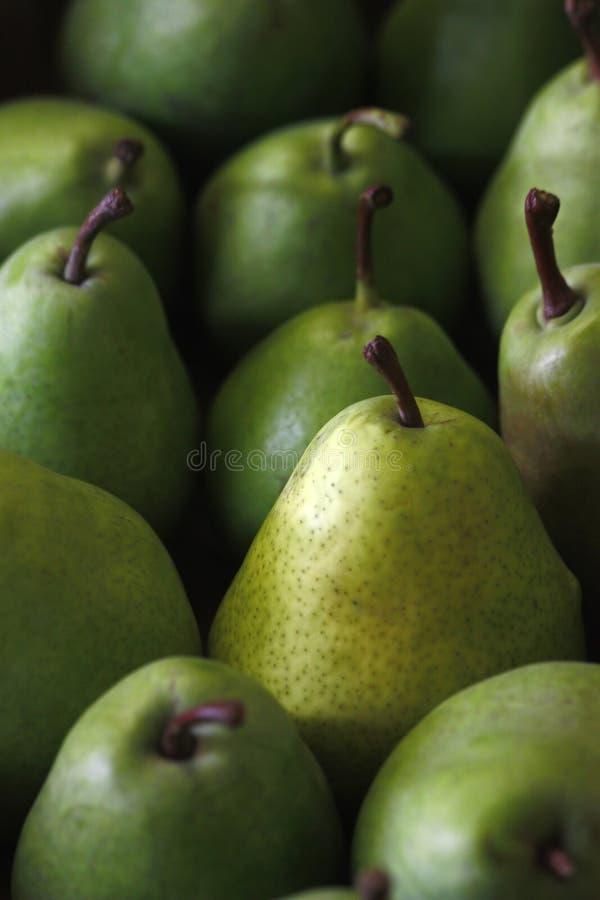 Grüne Birnen lizenzfreie stockbilder