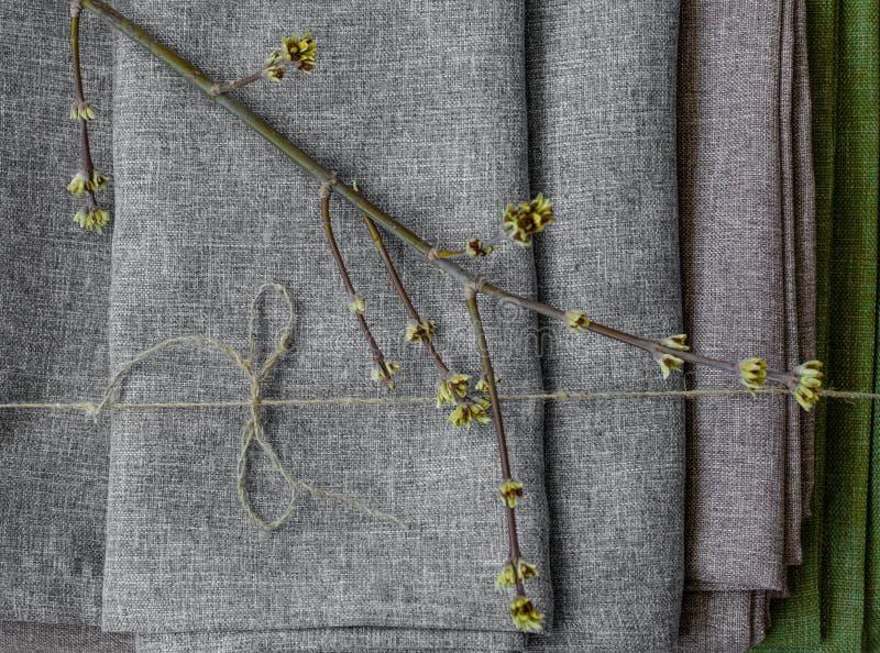 Grüne Blätter, die auf die gefaltete Draufsicht des grauen Gewebes legen stockfotografie