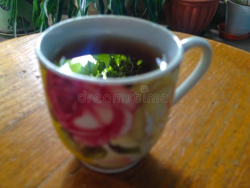 Grüne Blätter reflektierten sich in einer Schale grean Tee stockfotografie