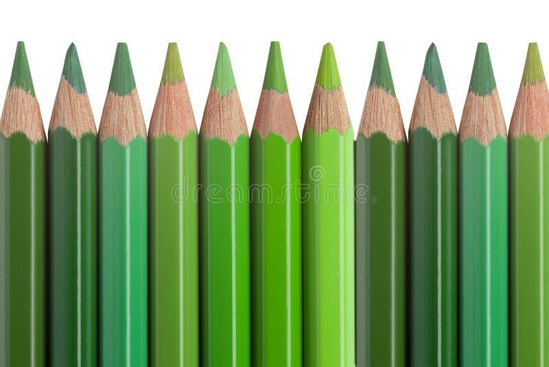 Grüne Bleistifte getrennt auf weißem Hintergrund stockfotos