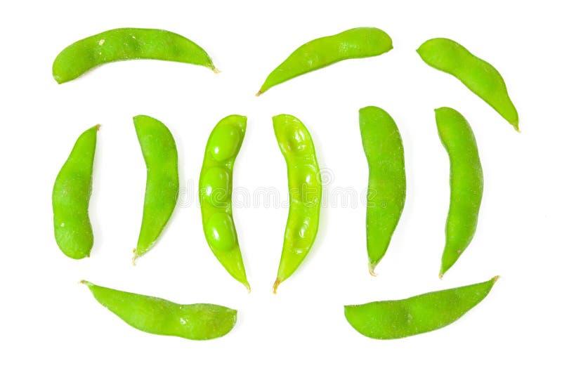 Grüne Bohne lizenzfreie stockfotografie