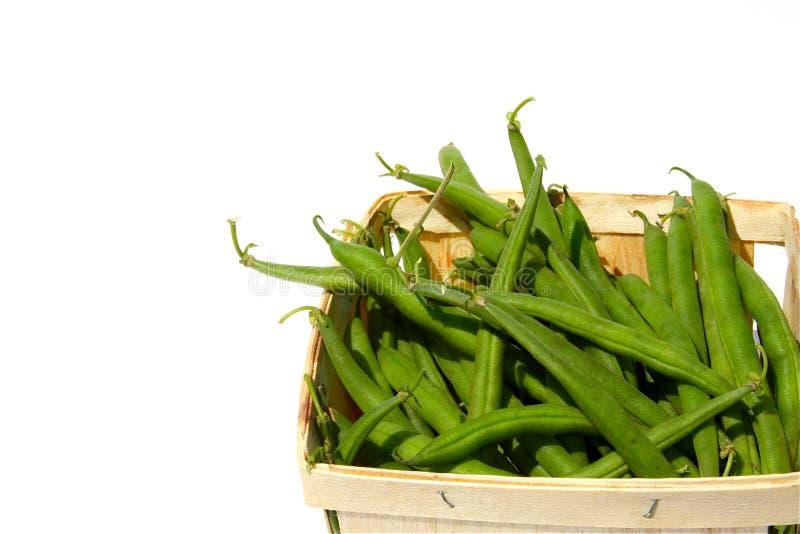 Grüne Bohnen lizenzfreie stockbilder