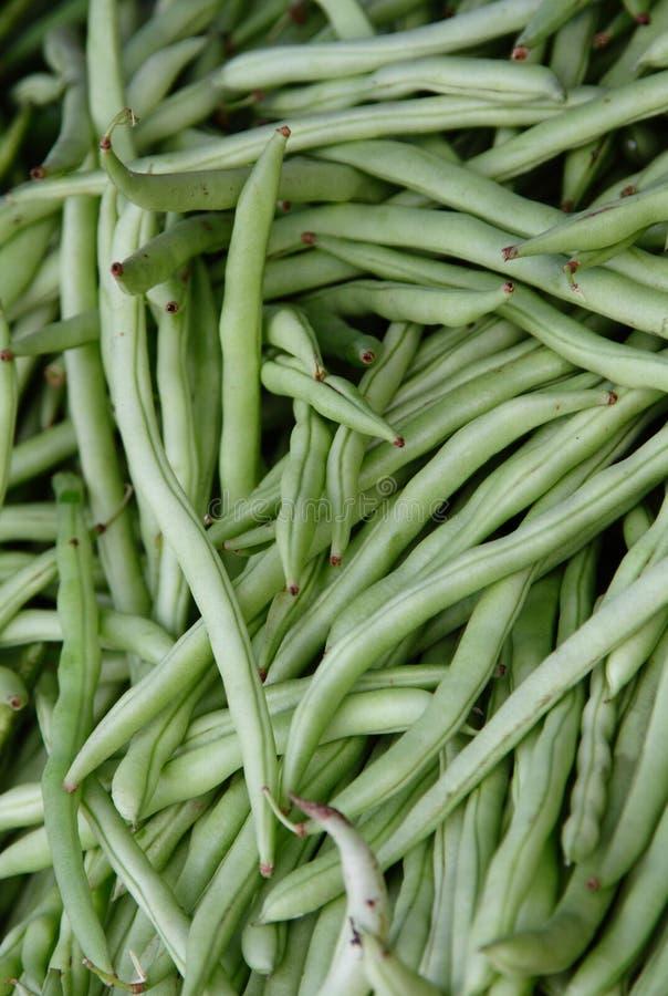 Grüne Bohnen lizenzfreies stockfoto