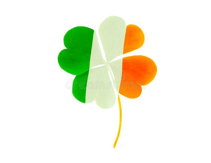 Grüne Clovers oder Shamrocks auf der Flagge Irlands Hintergrund für St Patrick's Day Holiday lizenzfreies stockbild