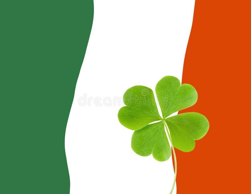Grüne Clovers oder Shamrocks auf der Flagge Irlands Hintergrund für St Patrick's Day Holiday stockbilder