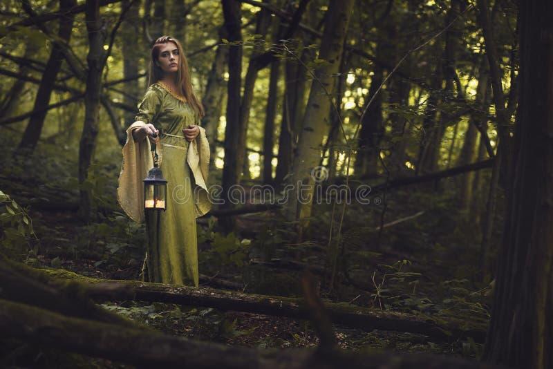 Grüne Dame des Holzes lizenzfreie stockfotos