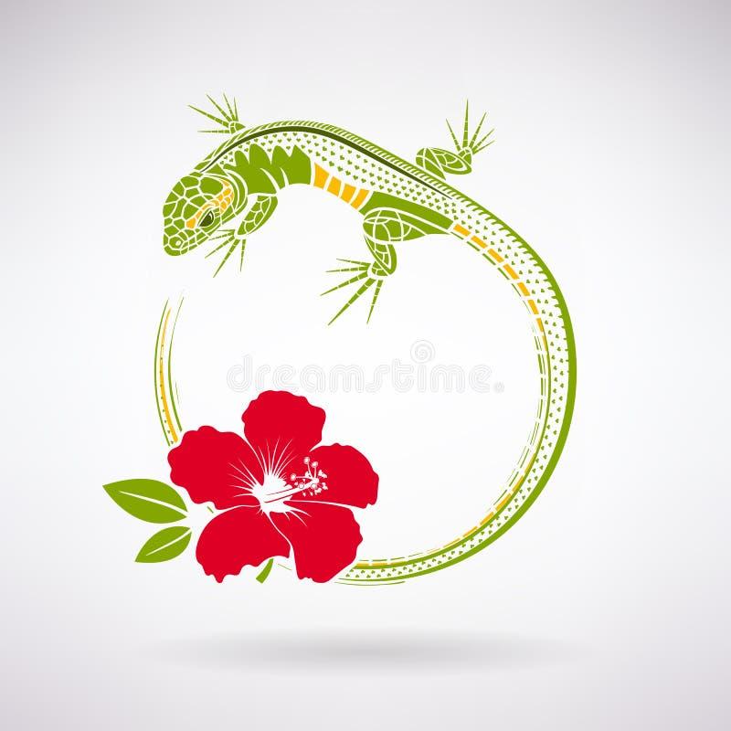 Grüne Eidechse und roter Hibiscus lizenzfreie abbildung
