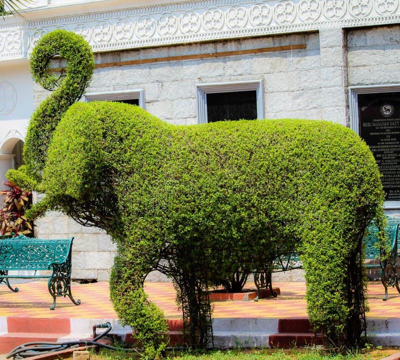 Grüne Elefant-Statue unter Verwendung der Anlagen stockbilder