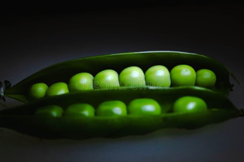 Grüne Erbsen in der Hülse lizenzfreie stockbilder