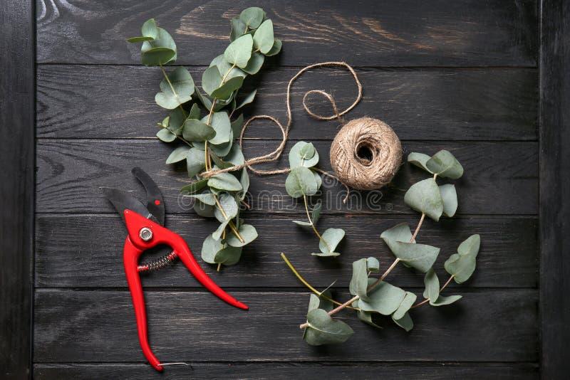Grüne Eukalyptusniederlassungen mit pruner und Schnurknäuel auf dunklem Holztisch stockfotografie