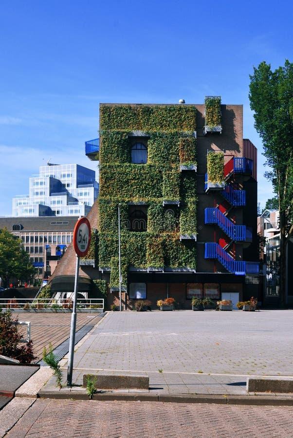 Grüne Fassade stockfotos