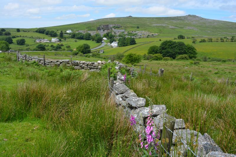 Grüne Felder, Wildflowers und Bruchsteinmauer, Großbritannien stockfoto