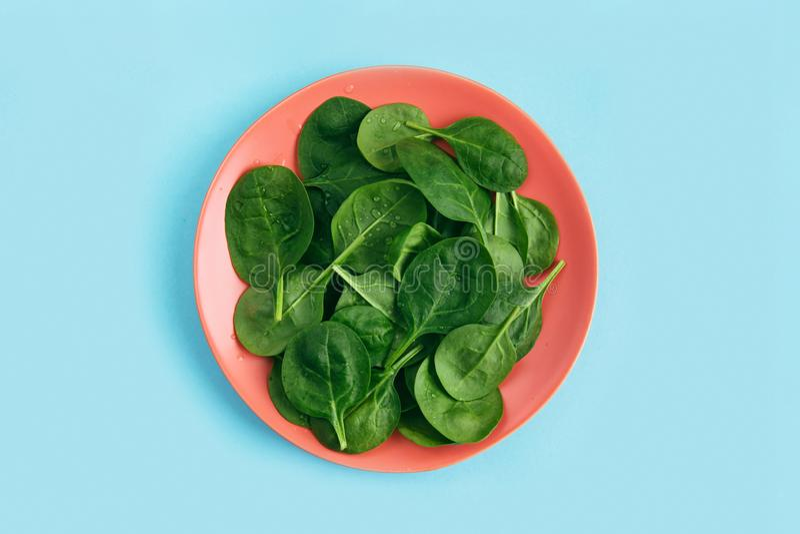 Grüne frische vegetarische Salatblätter auf korallenroter Platte auf blauem Hintergrund Gesundes und null überschüssiges Lebenkon stockbild
