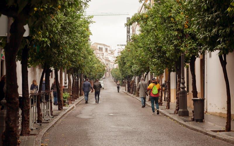 Grüne Gasse und gehende Leute in den historischen Stadtstraßen von Andalusien stockfotografie