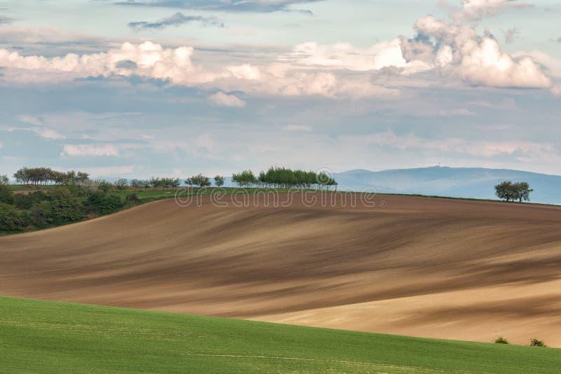 Grüne gewellte Hügel in Süd-Moray, Csezh stockbilder