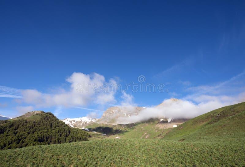 Grüne grasartige Hügel unter Schnee bedeckten Berge von Haute Provence nahe Col. de Vars in Frankreich mit einer Kappe lizenzfreies stockbild