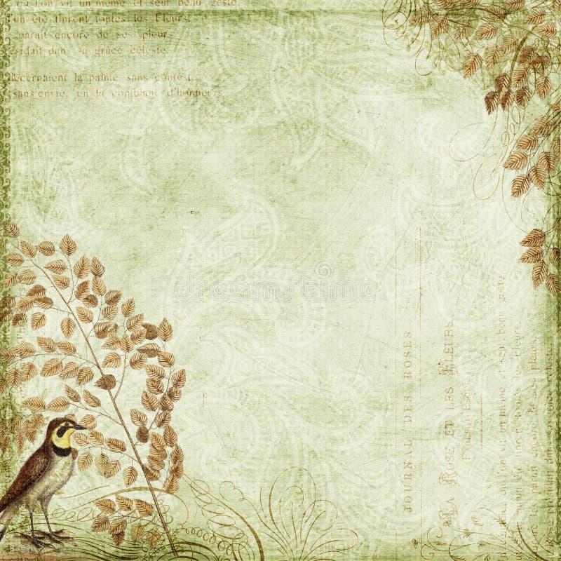Grüne Grungy Hintergrundauslegung mit Vogel, Blätter lizenzfreie stockfotos
