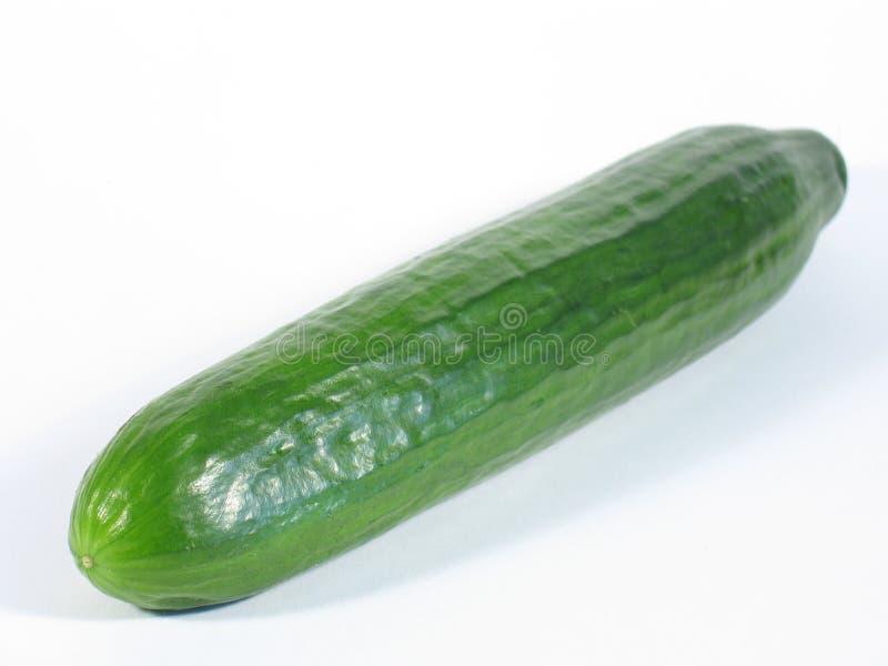 Grüne Gurke lizenzfreie stockbilder
