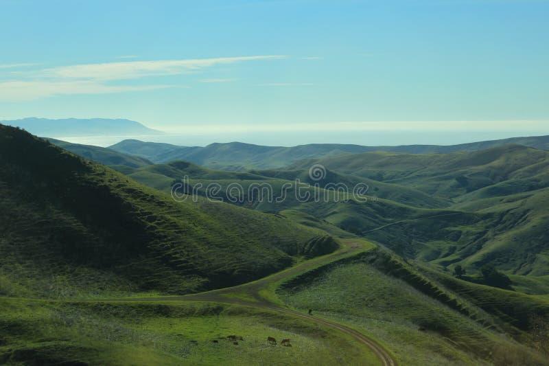 Grüne Hügel und Ozean-Landschaft lizenzfreies stockbild